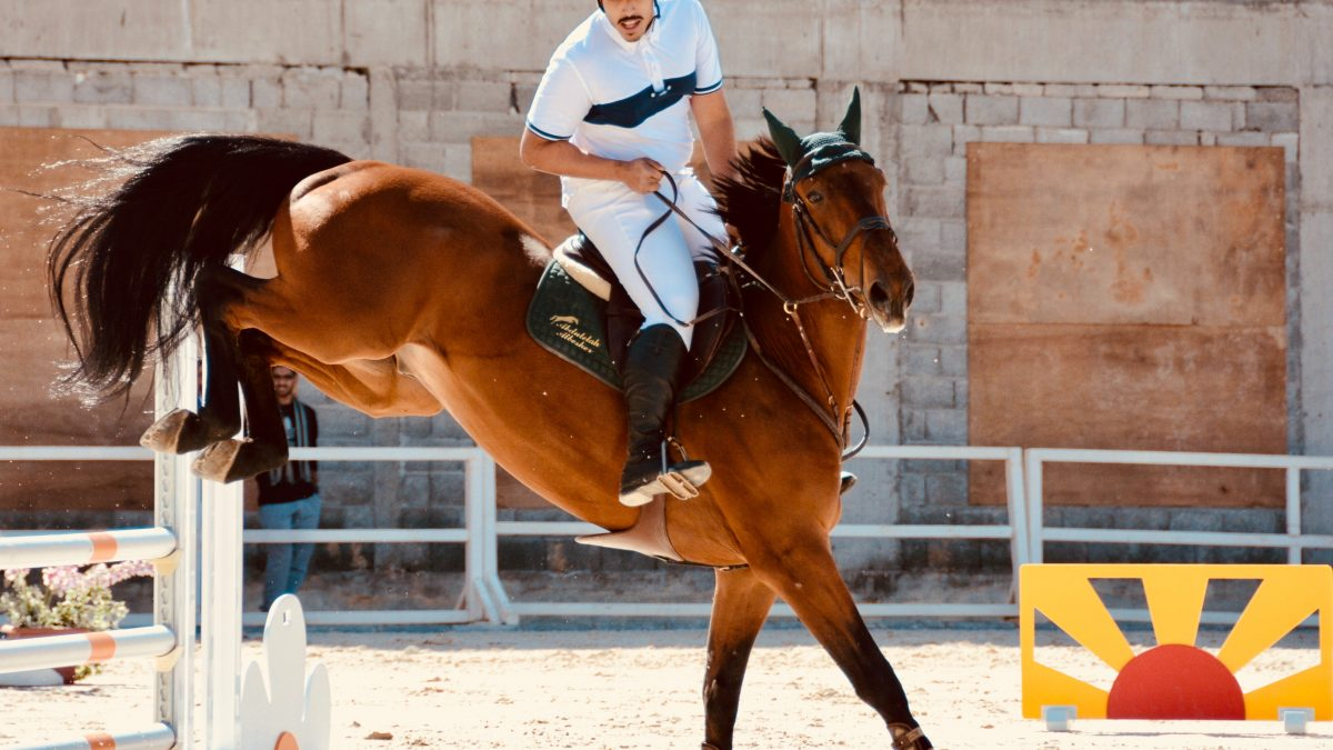 Latin America on Horseback: 4 Countries that Practice this Sport